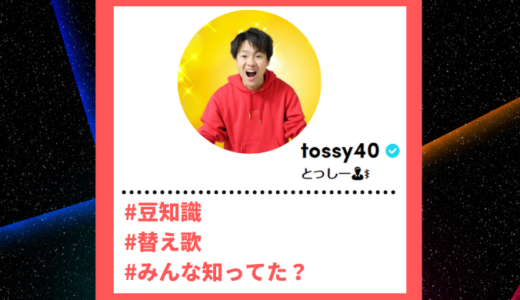 "Tiktoker""ティックトッカー""まとめ【トッシー/豆知識】"