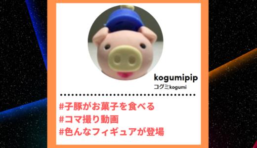 "Tiktoker""ティックトッカー""まとめ【コグミkogumi/お菓子コマ撮り】"