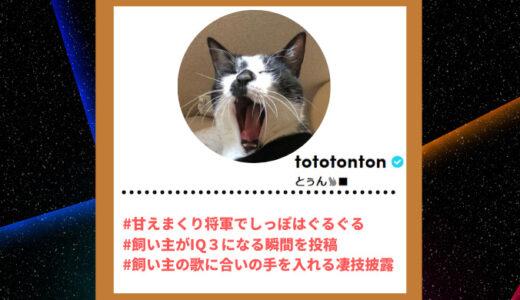 "Tiktoker""ティックトッカー""まとめ【とぅん/猫】"