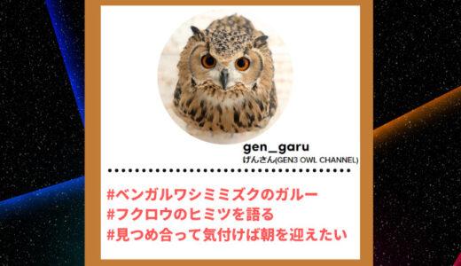 """Tiktoker""""ティックトッカー""""まとめ【げんさん(GEN3 OWL CHANNEL)/ふくろう】"""